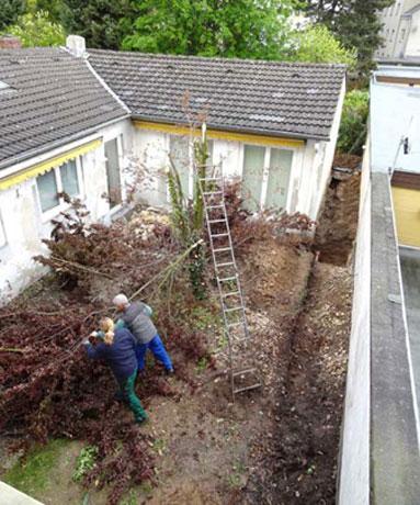 Die Innenhofgestaltung in einem Garten, nahe des Krefelder Stadtzentrums, fängt mit den Baumfällungen an.