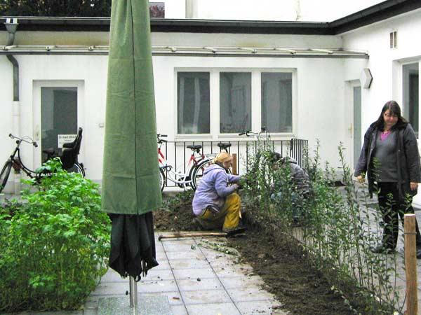Wir hoffen, dass sich die frisch gepflanzte Ligusterhecke an dem neuen Standort auch so wohl fühlt.